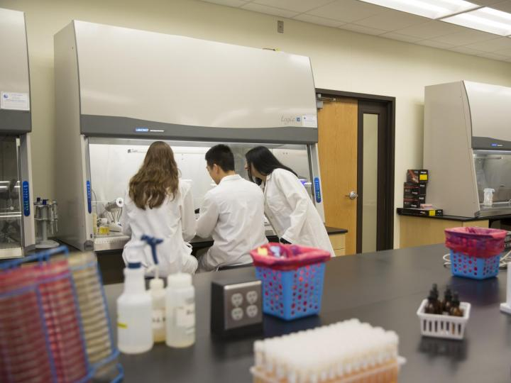 Master's in Molecular Biosciences at Albany College of Pharmacy and Health Sciences