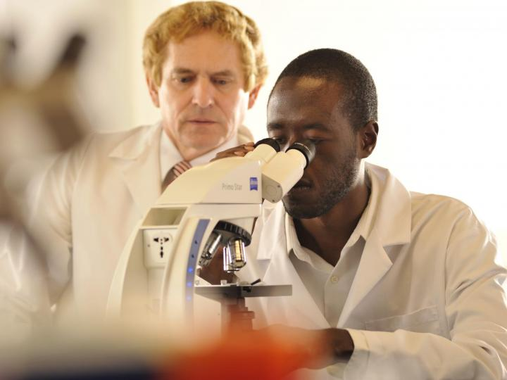 Bachelor Of Science In Clinical Laboratory Sciences At Albany College Of  Pharmacy And Health Sciences. Overview