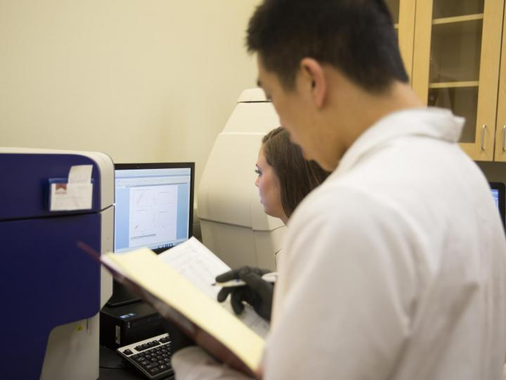 students conducting research